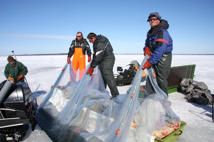 Пример идеальной работы для рыбаков